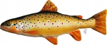 "GABY Bachforelle ""The Brown Trout"" 62cm"